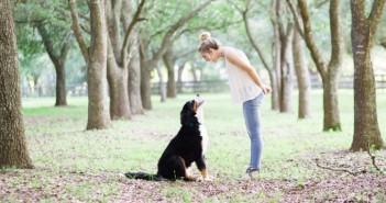 dog-social-list